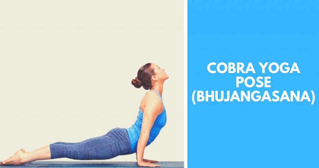 Cobra yoga pose - Bhujangasana